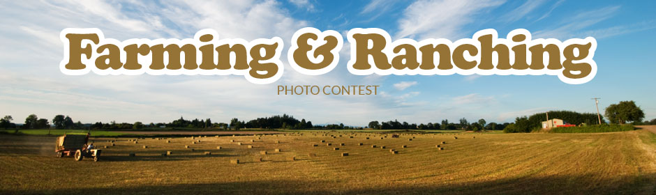 Farming & Ranching
