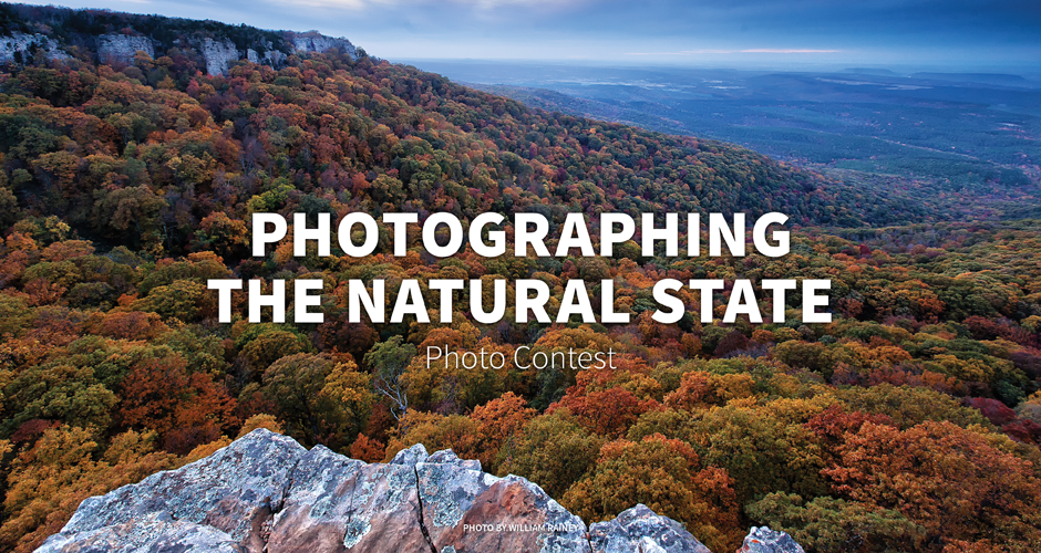 Photographing the Natural State